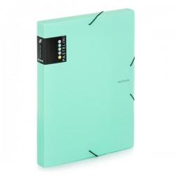 Krabice na spisy A4 s gumou Pastelini - zelená