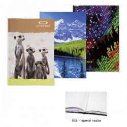 Záznamní kniha 65105, A5/100 listů, čtvereček, šitá
