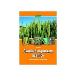 Škodlivé organizmy pšenice - Abiotická poškození, chroby