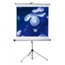 Plátno projekční stojanové 125 x 125 cm, Economy