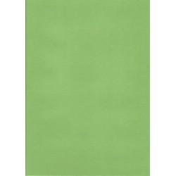 Karton DIP rec, A4/180g, 100 arc, zelený